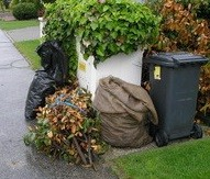 Biologický odpad, obce, podnikatelia, odpadservis, nakladanie s odpadmi,